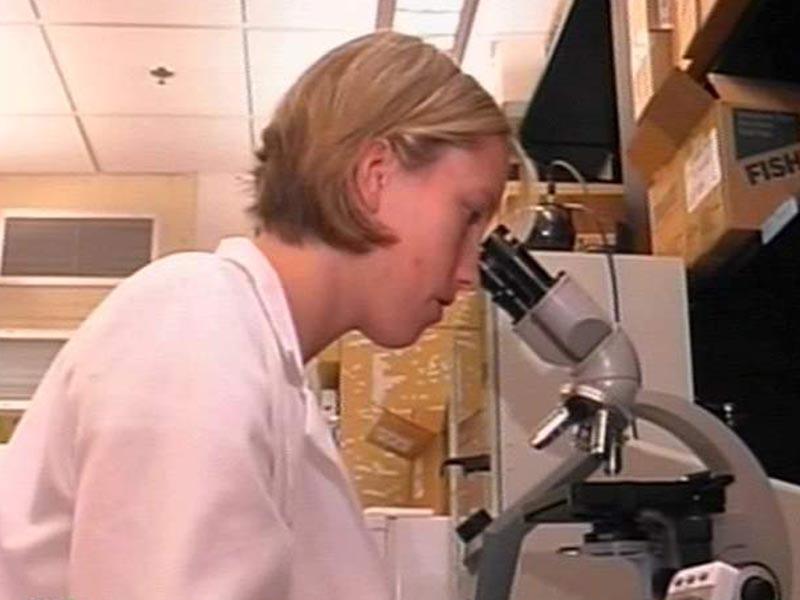 Ученые биологического факультета университета Буффало под руководством доктора Шарлотты Линдквист провели анализ ДНК 24 образцов биологических материалов, связанных, по утверждению владельцев находок, с йети