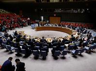 Россия и США внесли в Совет Безопасности ООН проекты резолюций о продлении мандата СМР