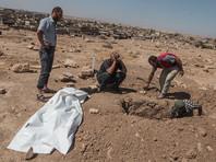 """В штабе международной коалиции назвали число погибших мирных жителей в ходе операции """"Непоколебимая решимость"""": более  800 человек"""
