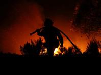 Трамп ввел в Калифорнии режим ЧС из-за непрекращающихся лесных пожаров
