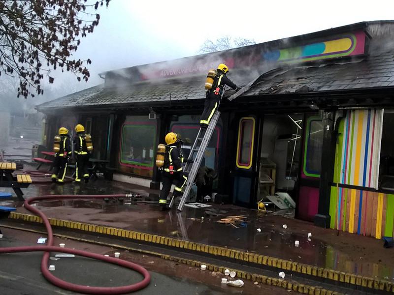 В Лондонском зоопарке после пожара пропали без вести сурикаты. Муравьед Миша погиб