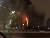 В Астане сгорела главная новогодняя елка столицы Казахстана (ВИДЕО)