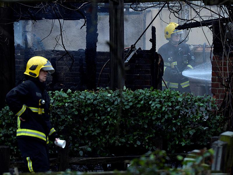 В Лондонском зоопарке после пожара пропали без вести сурикаты. Трубкозуб Миша погиб