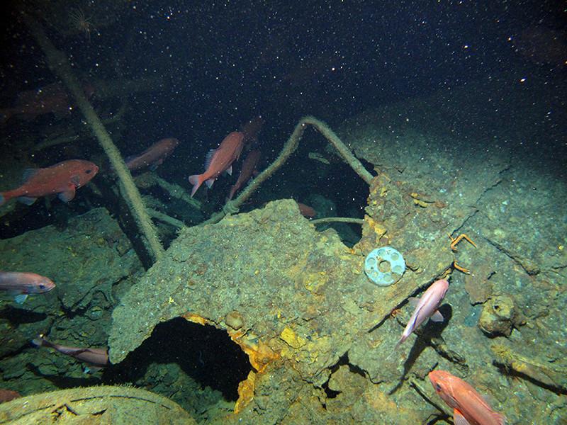 У берегов Папуа - Новой Гвинеи спустя сто лет удалось найти пропавшую австралийскую подлодку