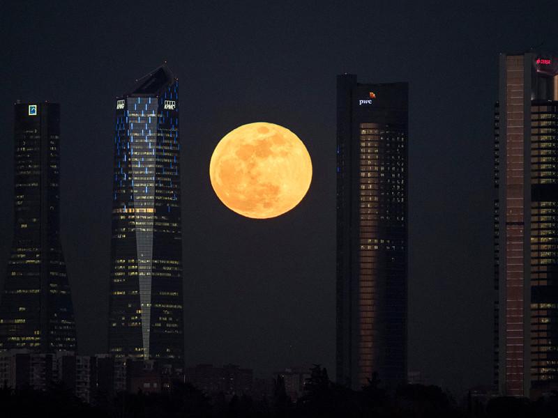 В среду, 31 января, жители со всех уголков Земли смогли понаблюдать за редким явлением - совпадением сразу трех астрономических событий, связанных с Луной, в один день