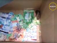 """Сотрудники казахстанского банка приютили мышей-""""мафиози"""", погрызших купюры в банкомате"""