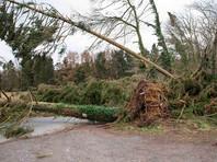 """На Северную Европу обрушился ураган """"Фредерике"""": в Нидерландах и Германии погибли 6 человек"""