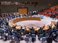Совет Безопасности ООН проведет экстренную встречу в связи с протестами в Иране