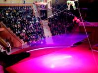 В цирке в Гомеле сорвалась с высоты гимнастка из московской труппы