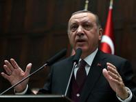 Реджеп Эрдоган объявил о начале операции против курдов в сирийском Африне