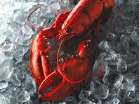"""В сообщении говорится, что """"ракообразных необходимо оглушить, прежде чем они будут убиты, а практика погружения живых омаров в [кипящую] воду более не допускается"""""""