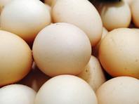 В Индонезии врачи обнаружили два куриных яйца в теле мальчика, который утверждает, что несется уже два года (ВИДЕО)