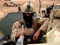 На востоке и севере Афганистана уничтожены десятки боевиков в ходе операции с привлечением авиации
