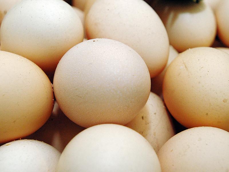 14-летний мальчик из индонезийской провинции Южный Сулавеси попал в заголовки СМИ после того, как заявил о своей экстраординарной способности откладывать яйца