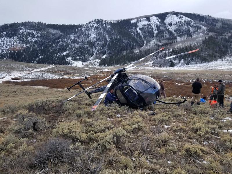 В американском штате Юта вертолет потерпел крушение после столкновения с лосем