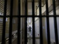 Адвокат рассказал о пыточных условиях содержания хакера Левашова в американской тюрьме