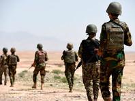 """Объявившие о начале нового наступления в Афганистане талибы* убили более 10 военных"""" />"""