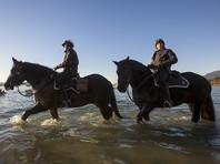 На канадском пляже нашли человеческую ступню - уже 14-ю за последние десять лет