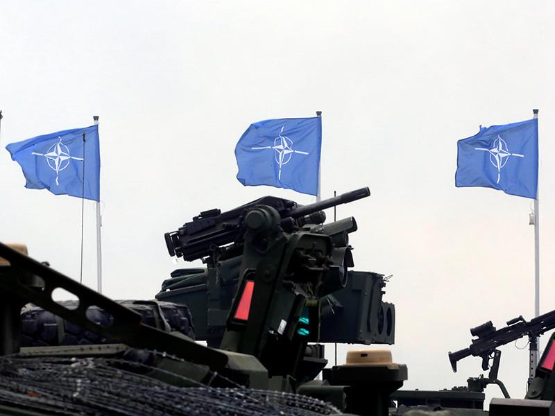 The Times: Лондон боится, что после встречи Трампа с Путиным в НАТО наступит кризис