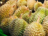 Таиланд готовится отправить в космос самый вонючий фрукт на Земле