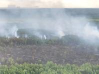 На Украине продолжается тушение лесного пожара, который произошел накануне около Чернобыльской АЭС. По состоянию на 10 часов утра 6 июня площадь возгорания в зоне отчуждения сократилась до пяти га, сообщает сайт Государственной службы Украины по чрезвычайным ситуациям (ГСЧС)