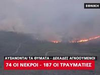 Число жертв лесных пожаров в Греции выросло до 74 человек