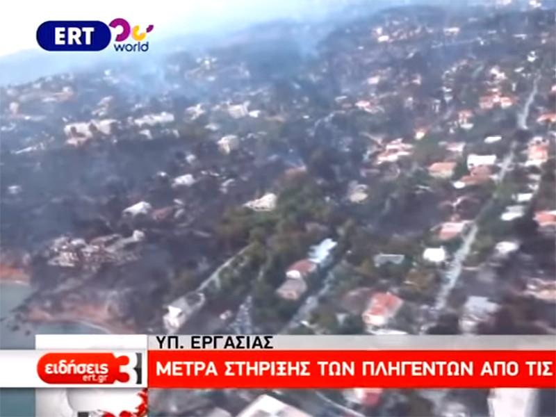 Власти Греции видят серьезные основания полагать, что пожары вблизи столицы страны могли возникнуть в результате преднамеренного поджога