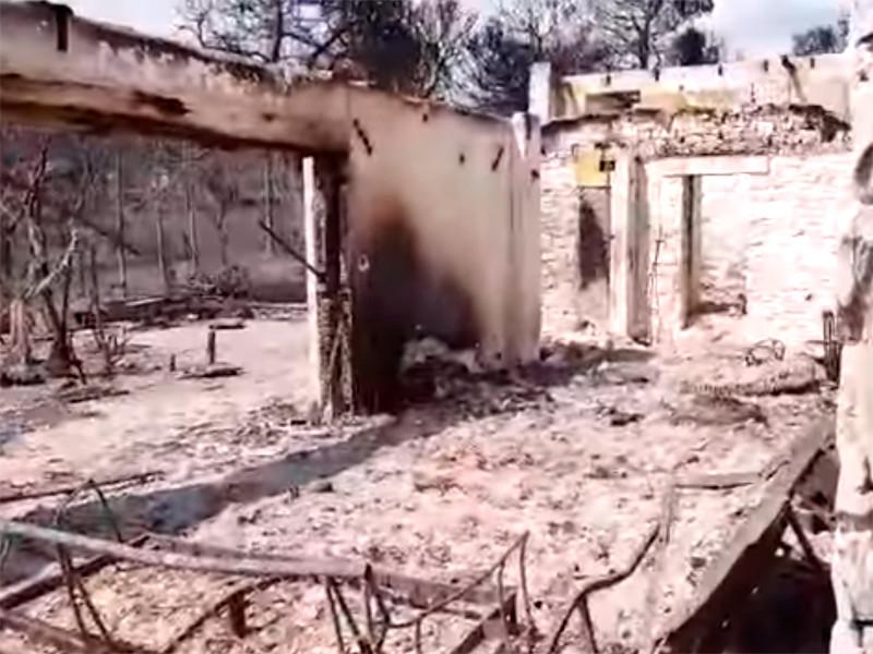 """Власти Греции считают возможной причиной  пожаров поджог"""" />"""