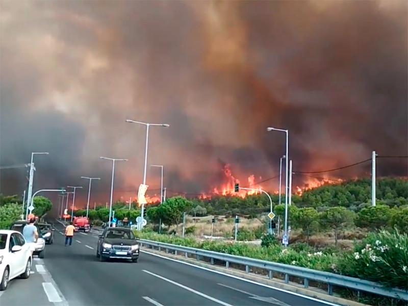 """В греческой Аттике объявлено чрезвычайное положение из-за лесных пожаров"""" />"""