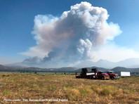 Лесные пожары в Северном полушарии ускорят глобальное потепление, считают в ООН