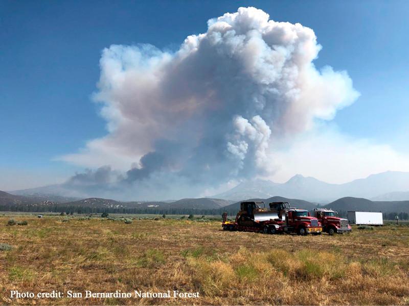 """Лесные пожары в Северном полушарии ускорят глобальное потепление, считают в ООН"""" />"""