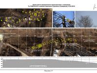 В 2011 году Межгосударственный авиационный комитет (МАК) опубликовал итоговый отчет о результатах технического расследования, в котором причиной крушения самолета было признано решение экипажа не уходить на запасной аэродром в сложных погодных условиях