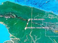 При крушении легкомоторного самолета в Индонезии выжил двенадцатилетний мальчик