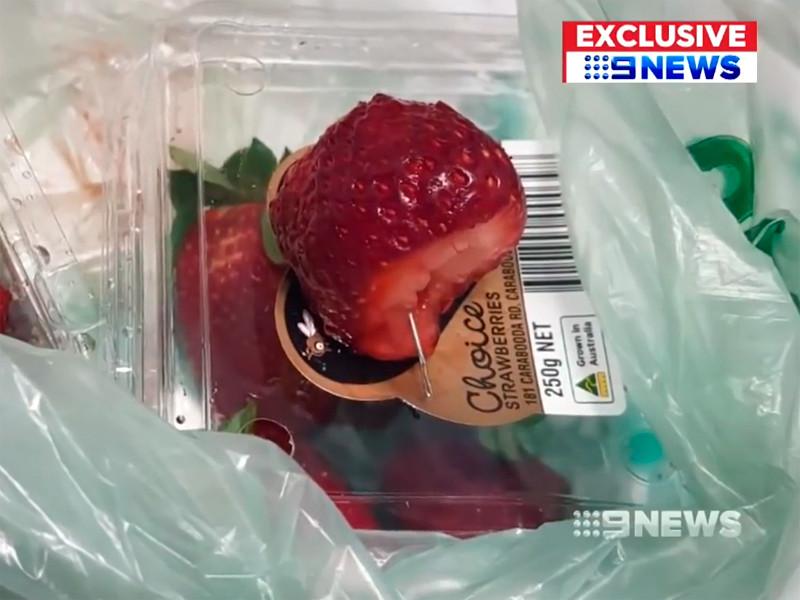 Сообщения о швейных иглах в ягодах, поставляемых с ферм Квинсленда в супермаркеты страны, появились в соцсетях в начале сентября