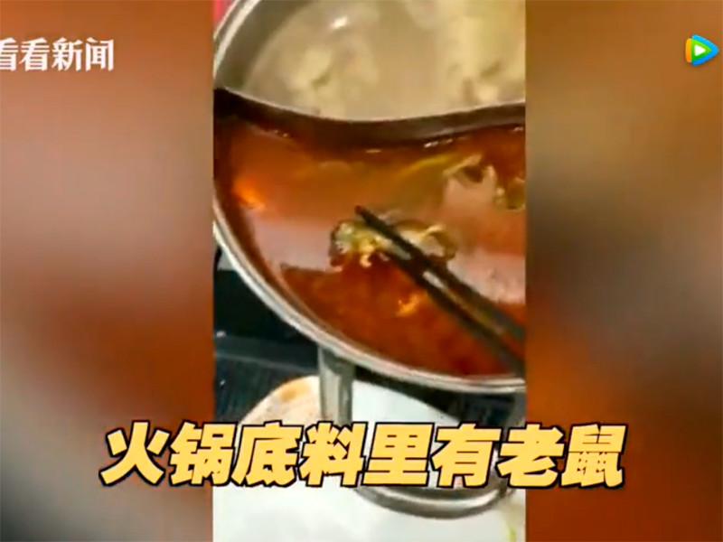 Мертвый крысёныш в супе обрушил акции сети китайских ресторанов Xiabu Xiabu на в $190 млн (ФОТО). Что еще находят в еде в общепите