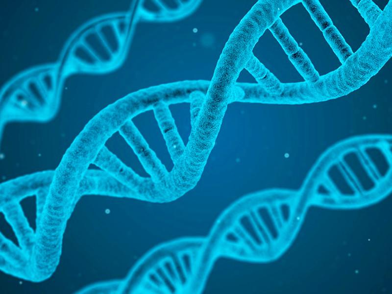 """Китай впервые в истории вывел на орбиту Земли банк генов"""" />"""