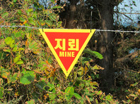 КНДР и Южная Корея приступили к уничтожению 2 млн мин на границе двух стран