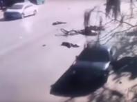 """В Китае водитель сбил более 20 школьников после ссоры с женой (ВИДЕО)"""" />"""