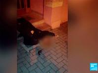 В четверг вечером сотрудники полиции Франции застрелили 29-летнего Шерифа Шеката, подозреваемого в нападении в Страсбурге