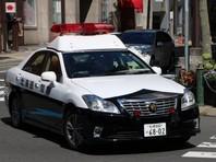"""В Токио сторонник """"Аум Синрикё""""* въехал на автомобиле в толпу празднующих Новый год, ранены девять человек"""