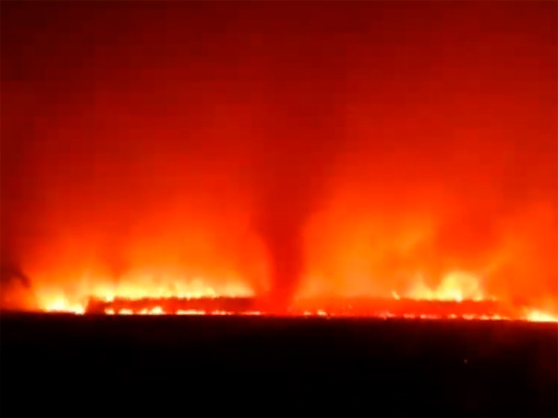 Стена огня из Приморья угрожала китайскому городу