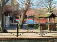 В начале марта 2018 года Скрипалей нашли на скамейке возле торгового центра в Солсбери с признаками отравления. Отец и дочь длительное время провели в коме