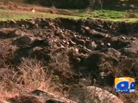После ударов ВВС Индии по своей территории Пакистан решил обвинить соседей в  экологическом терроризме
