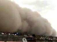 На северо-запад Индии обрушилась мощная песчаная буря (ВИДЕО)
