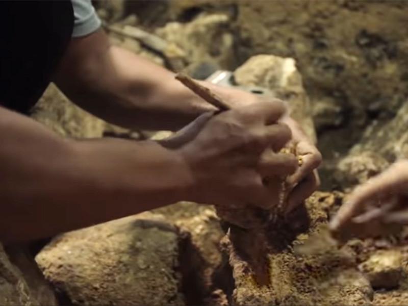"""В пещере Кальяо на филиппинском острове Лусон, где 15 лет назад нашли останки неизвестных """"хоббитов"""", найдены останки древних людей, которые принадлежат ранее неизвестному виду человека"""