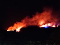 """В Великобритании природные пожары добрались до """"леса Винни-Пуха"""" (ФОТО, ВИДЕО)"""