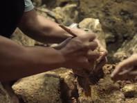 На филиппинском острове Лусон найдены останки древних людей ранее никому неизвестного вида человека (ФОТО, ВИДЕО)