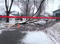 Юго-восток Канады пострадал от ледяного шторма: более 300 тысяч домов остались без света (ФОТО, ВИДЕО)