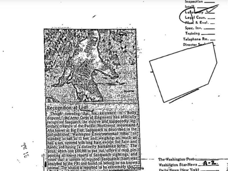"""ФБР рассекретило документы 1970-х годов об исследованиях шерсти """"снежного человека"""", которая оказалась оленьей"""" />"""