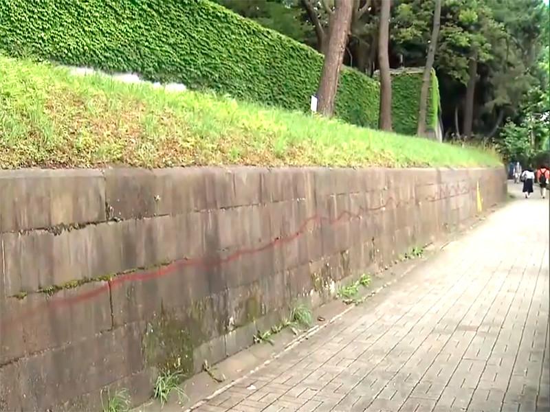 Гражданина России Глеба Песочного задержали по подозрению в нанесении граффити на стену возле Императорского дворца в Токио